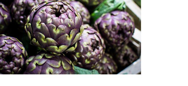 Organic purple artichoke at a local farmers market