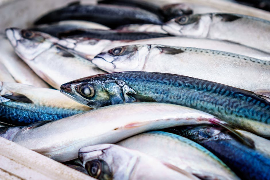 vitamin D in oily fish